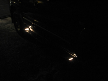 i mørket lyser de fint comp.JPG
