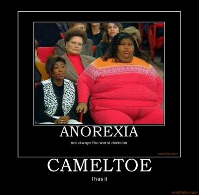 cameltoe_demotivational_poster_1219865579.jpg