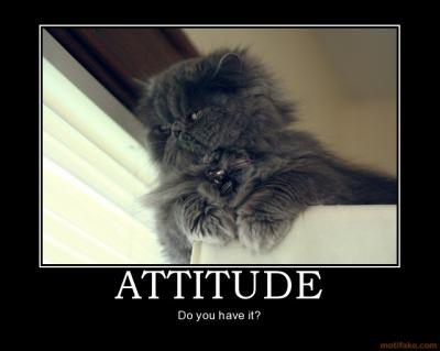attitude_cat_attitude_demotivational_poster_1217711512.jpg